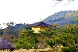 周りの自然と調和のとれた金閣寺